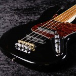 Flexx Jacob Fretless