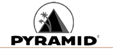 pyramid_strings_logo1_1